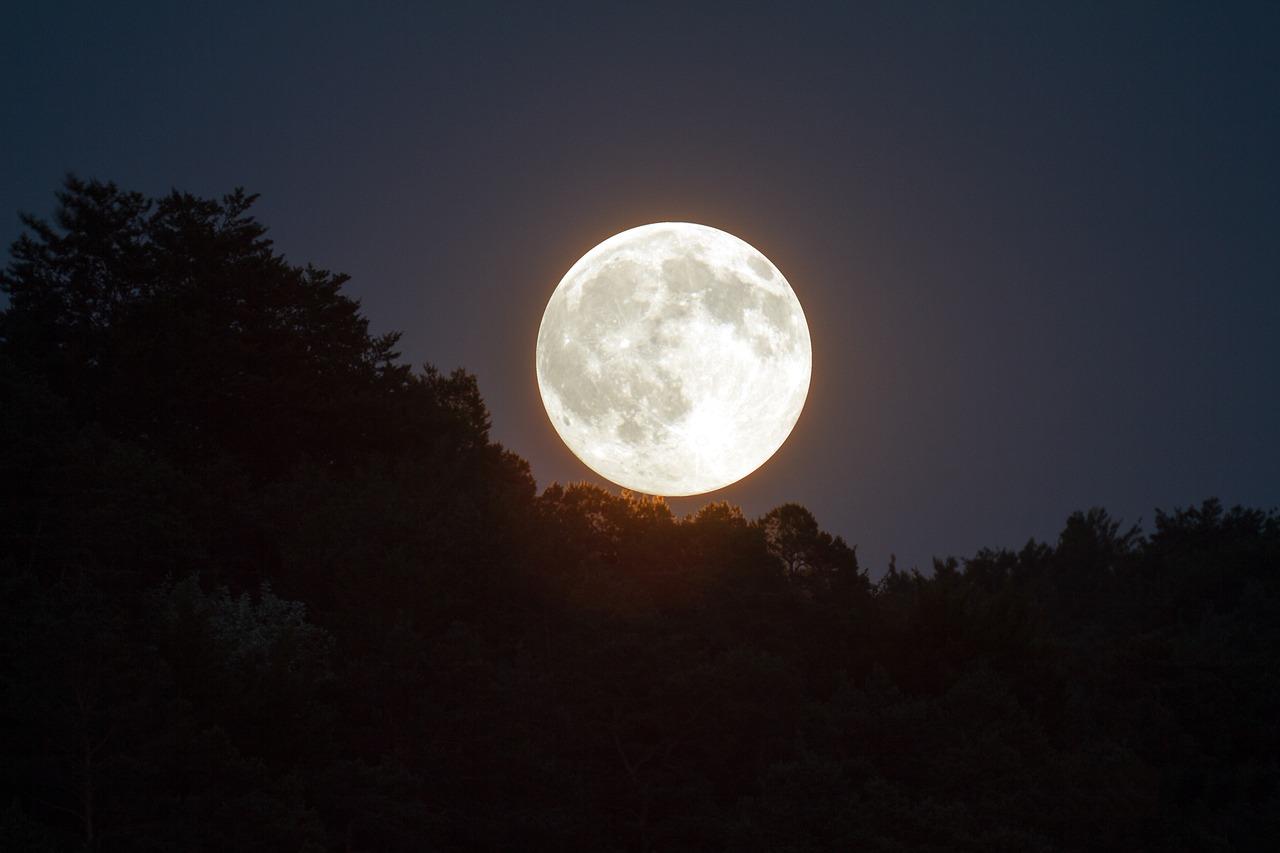Włamanie na serwery Pale Moon, główny łańcuch dostaw pozostaje bezpieczny