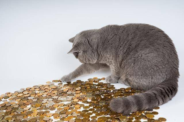 Dlaczego najlepsi rekruterzy zaoszczędzą Twoje pieniądze?