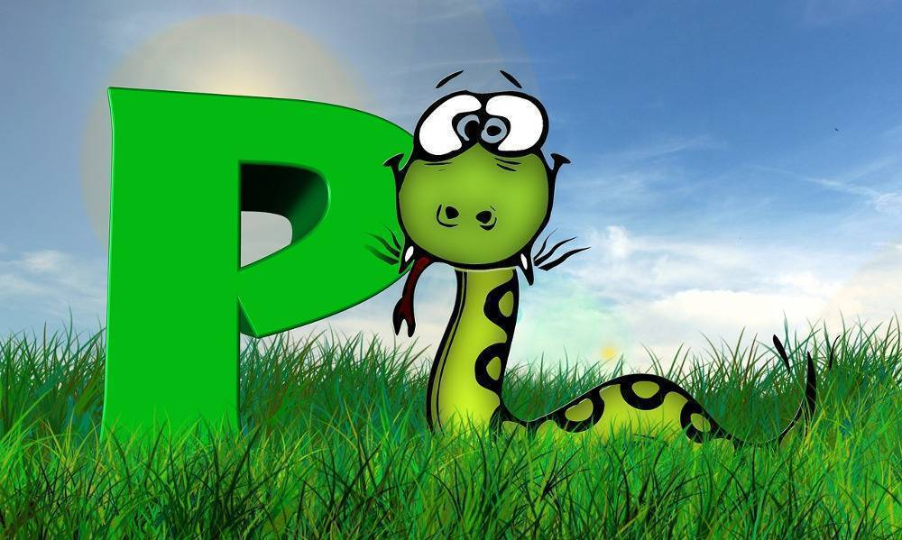Braki Pythona