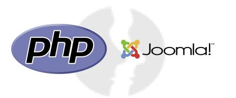 Web/PHP Developer with Joomla knowledge - główne technologie