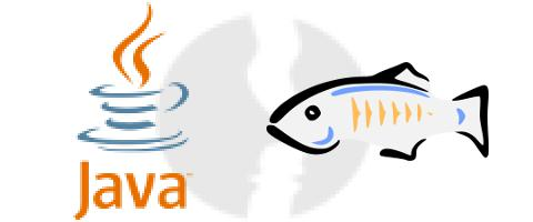 Developer Java - Tomcat, Glassfish, JBoss - główne technologie